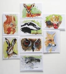 © KLArt.co.uk - Wildlife Mix Cards