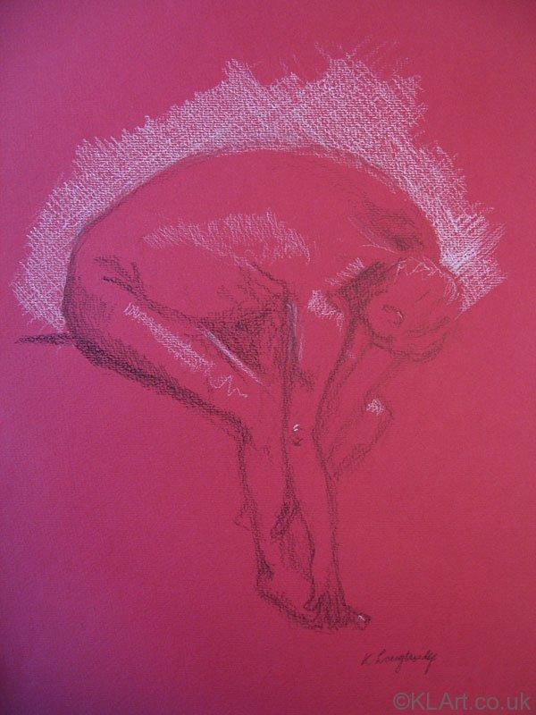 © KLArt.co.uk  Male Nude Bending