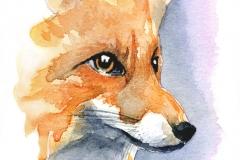 © KLArt.co.uk Foxy