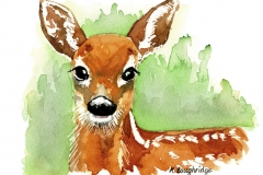 © KLArt.co.uk Aristocratic red Deer
