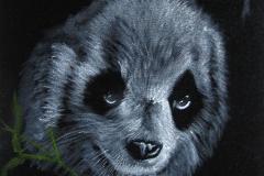 © KLArt.co.uk Panda Eyes