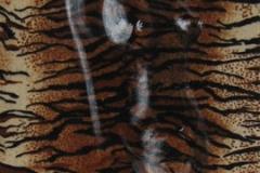 © KLArt.co.uk Tigress 1