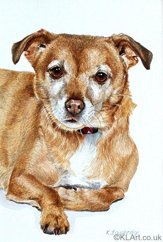 © KLArt.co.uk  Dog Portrait