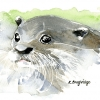 Curious Otter Watercolour image