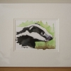 Image of Brock Badger Print