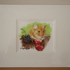 Image of Hazel Dormouse print