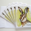 Image of Mr Hare Cards