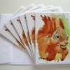 Image of Shadow Tail Red Squirrel Cards