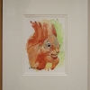 Image of Red Squirrel Print