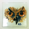 Owl portrait on glass panel